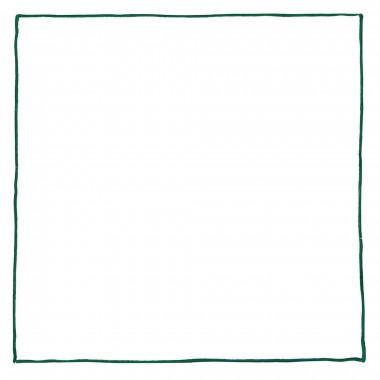 Biała poszetka z zielonym obszyciem E136
