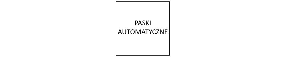 Paski automatyczne