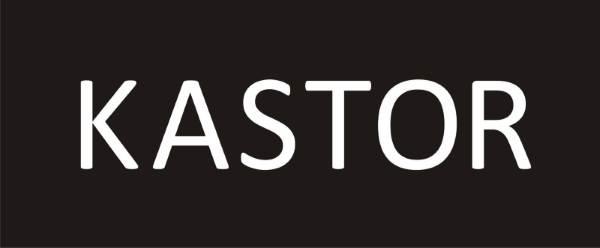 Kastor - Koszule męskie
